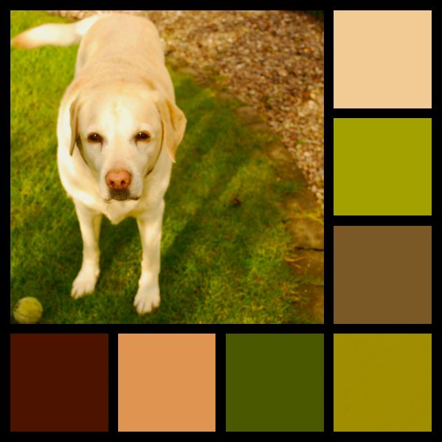 Susie in Garden PicMonkey Collage